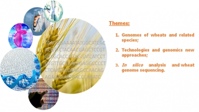 International seminar genome and wheat sequencing